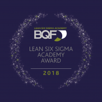 Lean Six Sigma Award - coloured